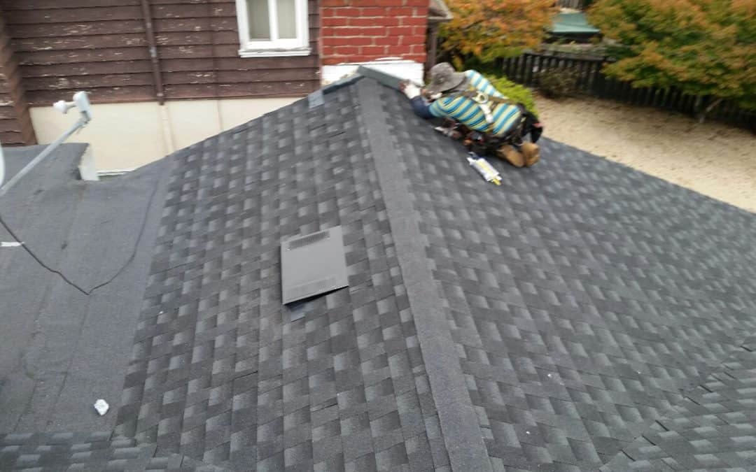 Maintaining Your Tile Roof