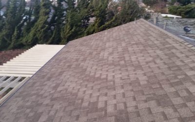 The Ultimate Guide to Different Types of Roofs