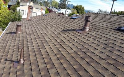 Why You Have A Leaky Roof (And How To Prevent It!)