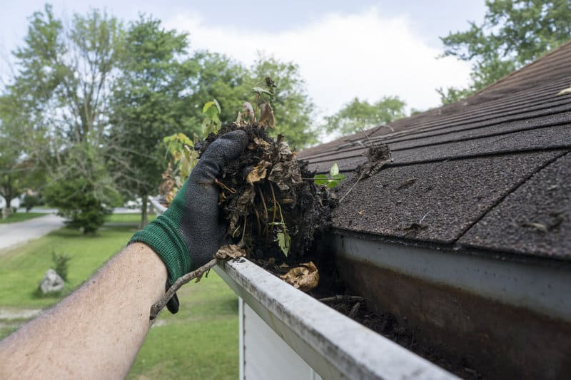 Why Annual Roof Maintenance Is So Important