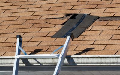 Preserve Your Roof: The Ultimate Guide To Annual Roof Maintenance