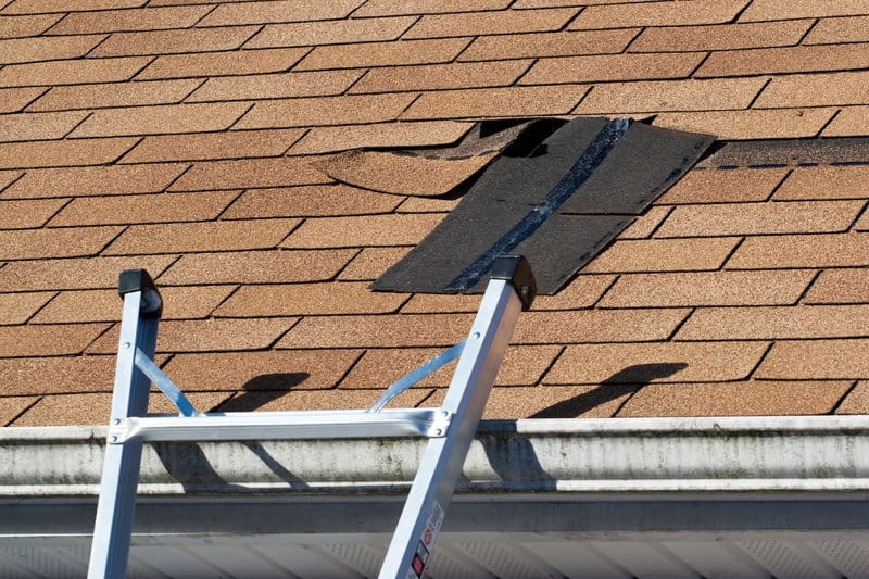 preserve your roof the ultimate guide to annual roof maintenance